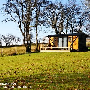 "Pen-Rhos Luxury Glamping ""Cuckoo'S Nest"" photos Exterior"