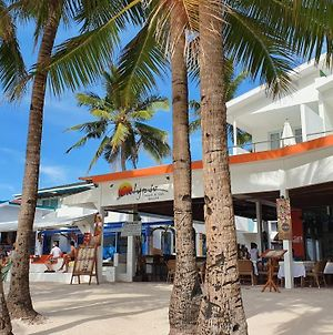 Calypso Beach And Dive Resort photos Exterior