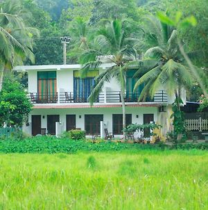 Paddy Field View Resort photos Exterior