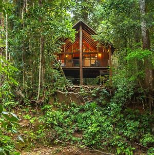 The Canopy Rainforest Treehouses & Wildlife Sanctuary photos Exterior