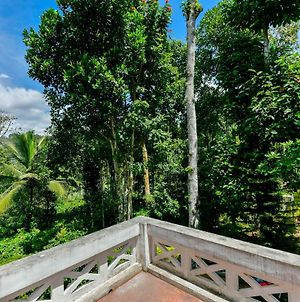 2Bhk Forest View, Sultan Bathery photos Exterior