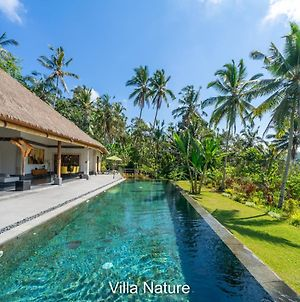 Rouge - Private Villa Nature photos Exterior