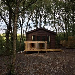 Woodland View -Hot Tub-Tenby-Carmarthen-St Clears photos Exterior