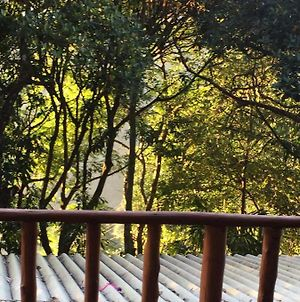 Nature Paradise Home Stay photos Exterior