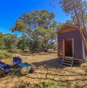 Geelong Tiny House photos Exterior