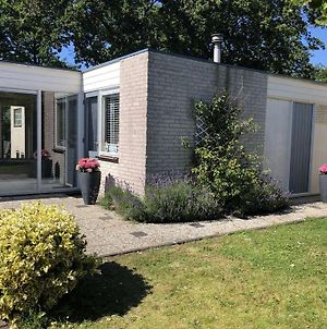 Bungalow Dune - Klepperstee Ouddorp Near The Beach With 2 Terraces And Garden - Not For Companies photos Exterior