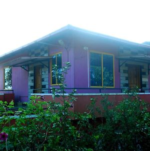 Silver Mist Homestay Coorg photos Exterior