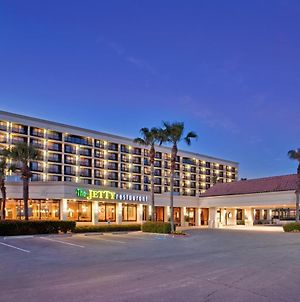 Holiday Inn Resort Galveston - On The Beach, An Ihg Hotel photos Exterior