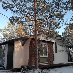 Bungalow In The Russian Forest photos Exterior