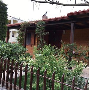Wooden House In Ioannina photos Exterior