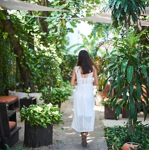 Secret Garden Tulum Hotel photos Exterior