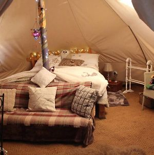 Woodys Cosy Winter Glamping photos Exterior