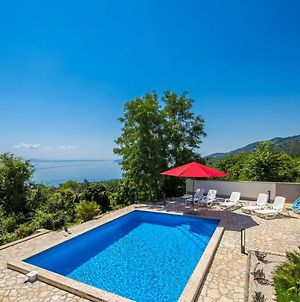 Luxury Villa With A Swimming Pool Poljane, Opatija - 17959 photos Exterior