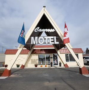 Camrose Motel photos Exterior