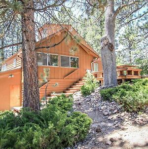 Bear View 1425 By Redawning photos Exterior