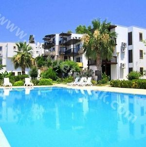 Bodrum Apartment Sleeps 5 With Pool And Air Con photos Exterior