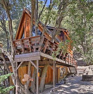Updated Tree House Pine Mtn Club Cabin By Trails photos Exterior
