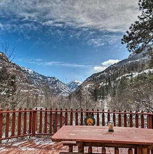 Home With San Juan Mountain Views-2 Miles To Ouray! photos Exterior
