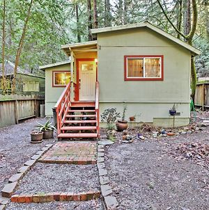 Quiet Cottage With Redwood Forest Views & Fire Pit! photos Exterior