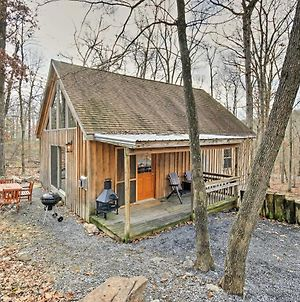 Updated Luray Cabin Near Dwtn & Shenandoah River! photos Exterior