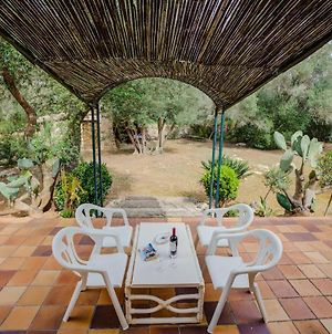 Villa Sa Rota Is A Wonderful 3 Bedroom Villa Located In The Heart Of The Mallorcan Countryside photos Exterior