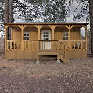 Show Low Cabin With Amenities, 13 Mi To Hon-Dah! photos Exterior
