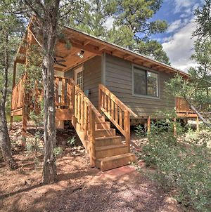 Dog-Friendly Show Low Cabin 13 Mi To Hon-Dah! photos Exterior
