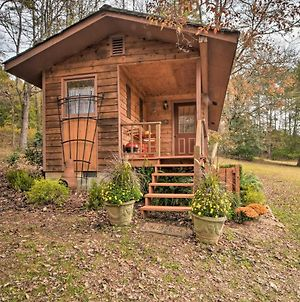 Forest Fantasy - Escape To The Smoky Mountains photos Exterior