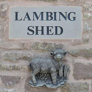 Lambing Shed - Uk12380 photos Exterior