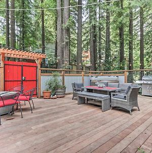 Redwoods Treehouse Across From The Russian River! photos Exterior