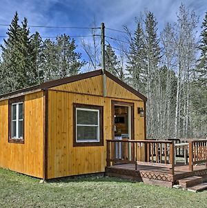 Black Hills Forest Cabin 3 Miles To Hill City! photos Exterior
