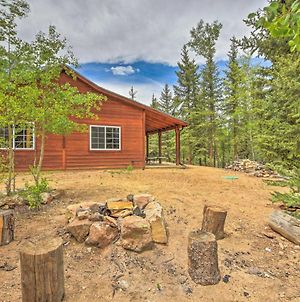 Serene Cabin On 3 Wooded Acres-20 Min To Fairplay photos Exterior