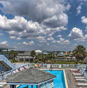 Cozy Gulf Shores Condo - Just Steps To The Beach! photos Exterior