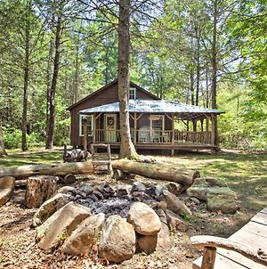 Modern Cabin Retreat On 10 Acres With Trout Stream! photos Exterior