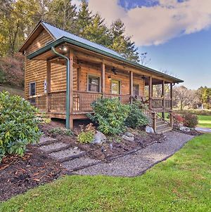 Cozy Country Cabin With Deck 12 Miles To Asheville! photos Exterior