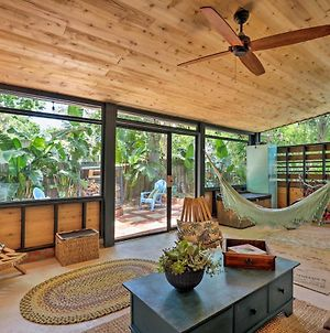 Tropical St Augustine Studio Near Town And Beach! photos Exterior