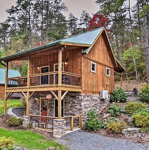 Chanterelle Cabin With Hot Tub 12 Mi To Asheville photos Exterior