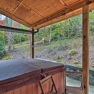 'Chantarelle' Cabin With Hot Tub - Near Asheville! photos Exterior