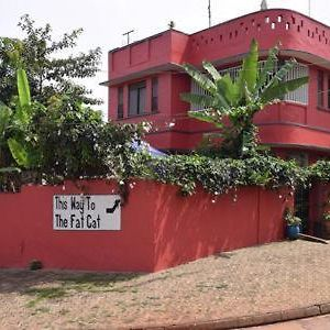 Fat Cat Backpackers photos Exterior