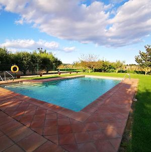 Pleasant Holiday Home In Gerona With Swimming Pool Vr photos Exterior