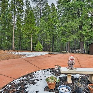 Pollock Pines Apartment With Private Deck On 5 Acres photos Exterior