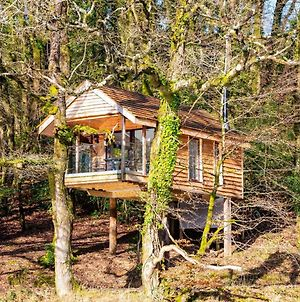 The Tree House - Eco-Friendly, Back To Nature Experience photos Exterior