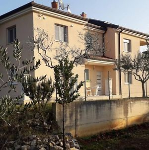 Apartment Laura A2+2 For Max 4 Pax With 1 Bedroom Garden And Balcony photos Exterior