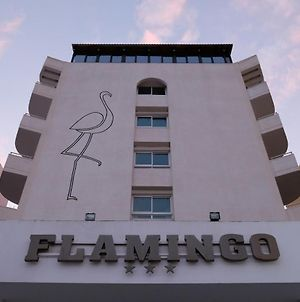 Flamingo Beach Hotel photos Exterior