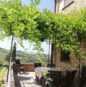 Holidays In Apartment With Swimming Pool In Tuscany Siena photos Exterior
