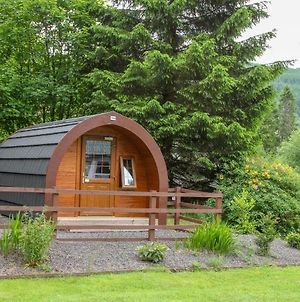 Glamping Hut photos Exterior