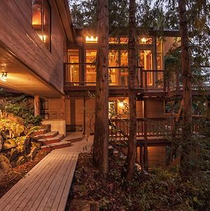 Hideaway In The Trees photos Exterior