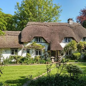 Thatched Eaves photos Exterior