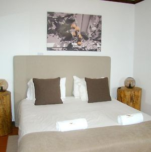 Studio In Armamar With Wonderful Mountain View Shared Pool Furnished Terrace photos Exterior