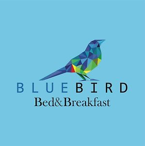 Blue Bird Bed And Breakfast photos Exterior